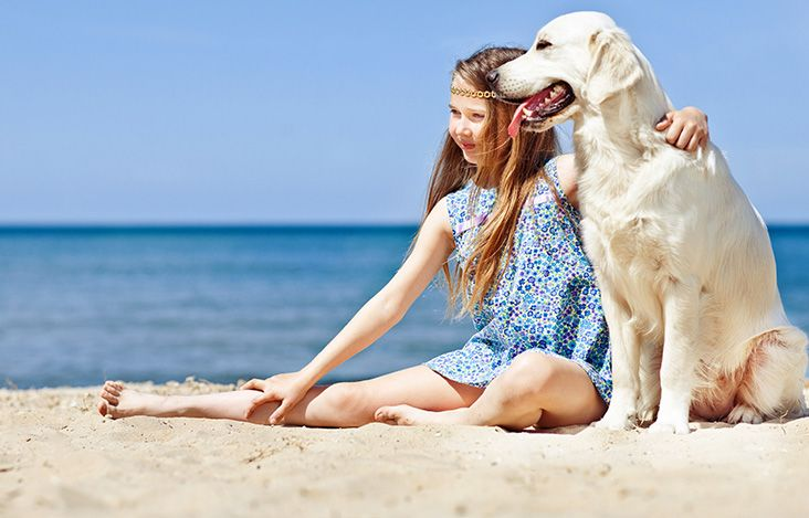 Kids-Camp-Beach-with-dog-Teaser